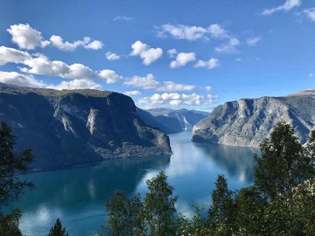 Sognefjord by Terese Kvinge