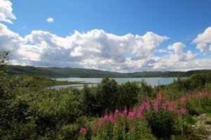Mountain scenery along the Bergen rail line. Photo by Rita de Lange, Fjord Travel Norway