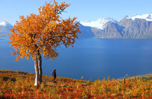 Arctic Coast by Graham Austick, Nordnorsk Reiseliv