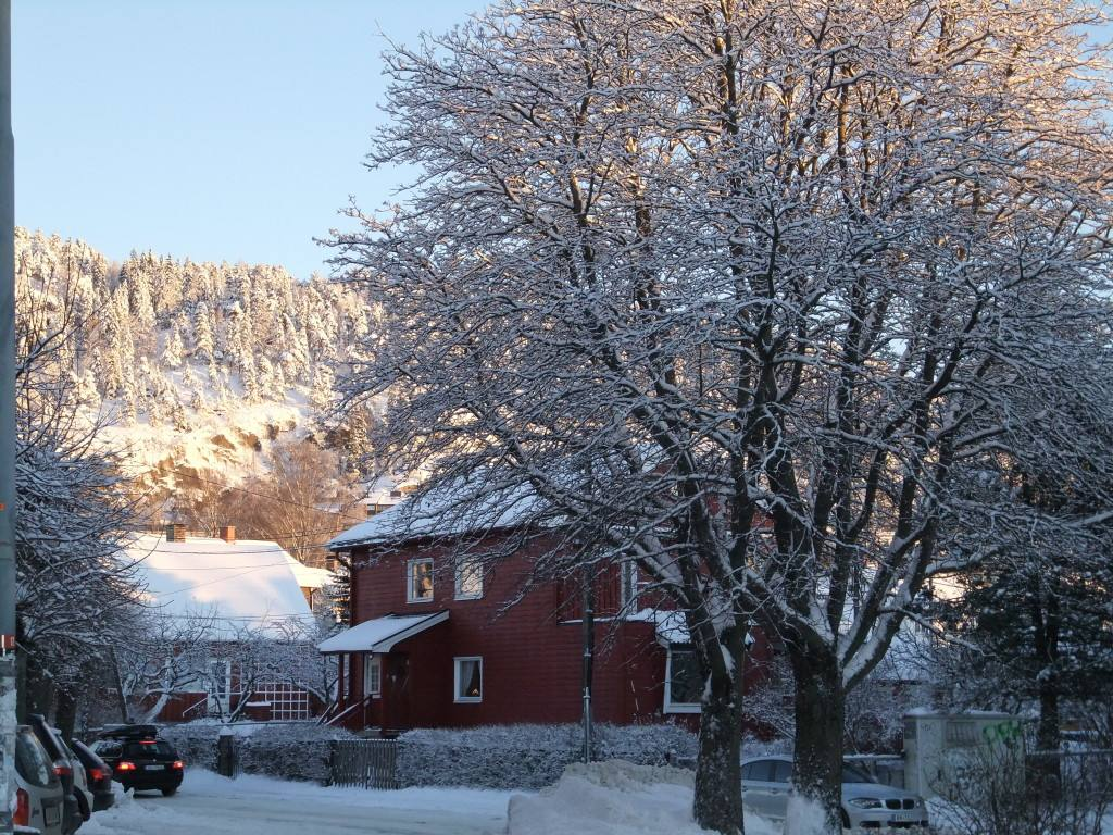 Winter in Oslo, view of Grefsenkollen. Photo by Rita de Lange, Fjord Travel Norway