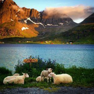 Lofoten Scenery by worldwanderlustphotography/Foap/Visitnorway.com