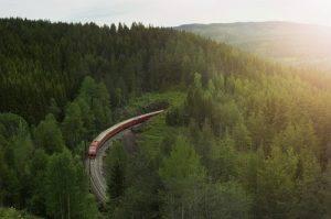Train in Hallingdalen by NSB