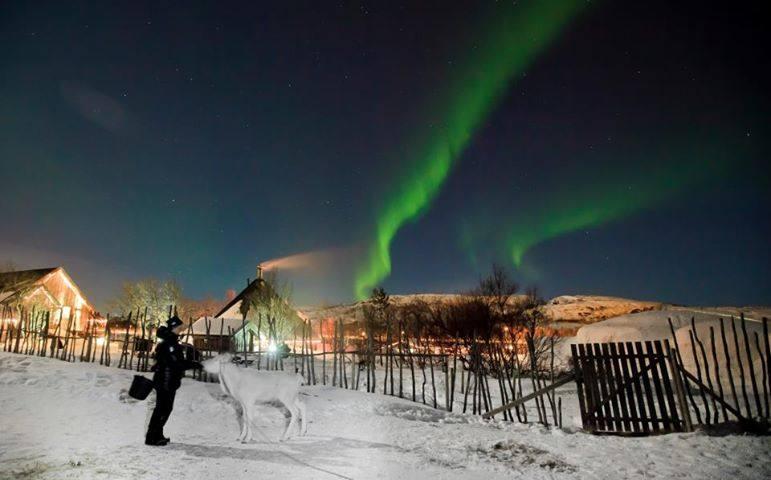 Northern Lights Kirkenes, outside the Snow hotel. Photo by Helge Staerk, Kirkenes Snow hotel
