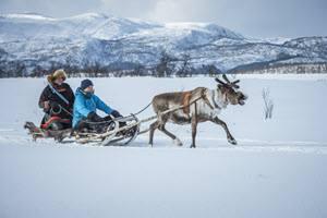 Reindeer sledge by Trym Ivar Bergsmo, Nordnorsk Reiseliv
