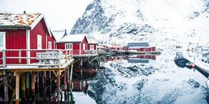 Winter on Lofoten Islands by Sheridan Conor, Hurtigruten