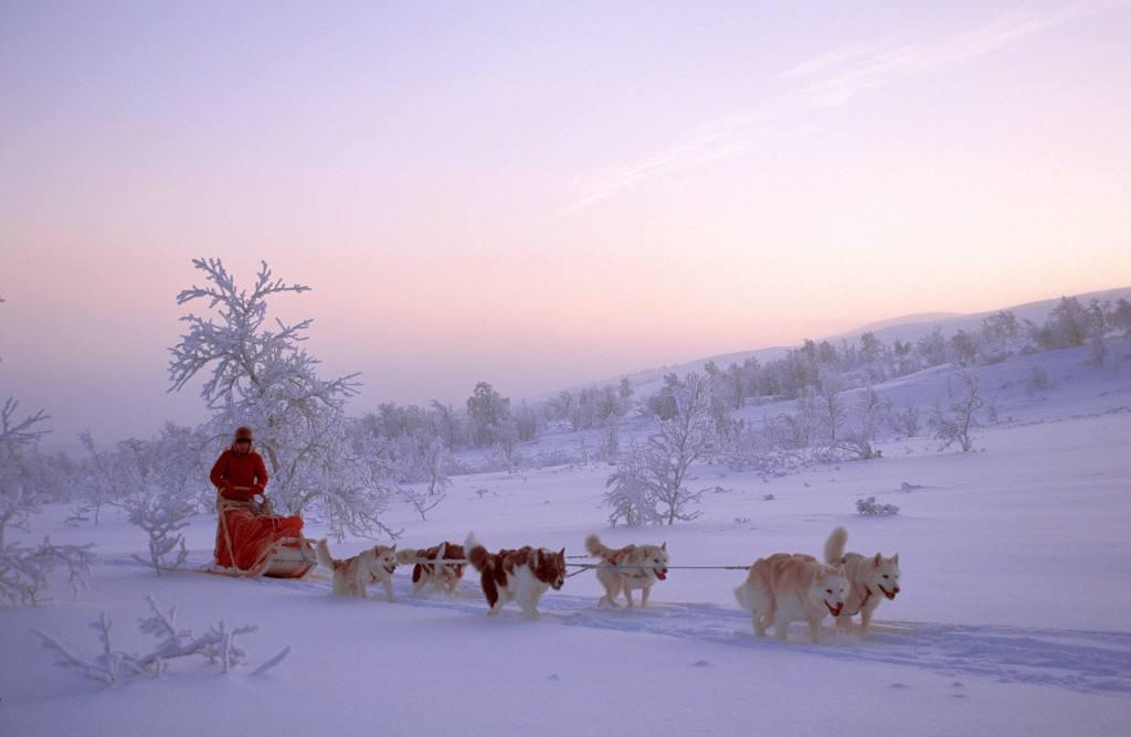 Hurtigruten Arctic Tours