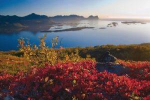 Arctic Norway by Reiner Schaufler, www.nordnorge.com