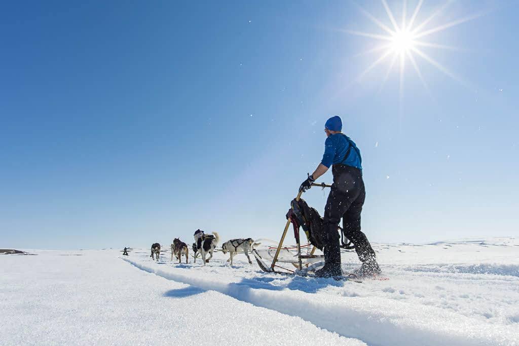 Dog sledding Arctic Norway by Orjan Bertelsen, Hurtigruten