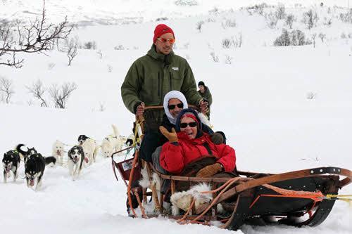 Dog sledding Tromso by Hurtigruten