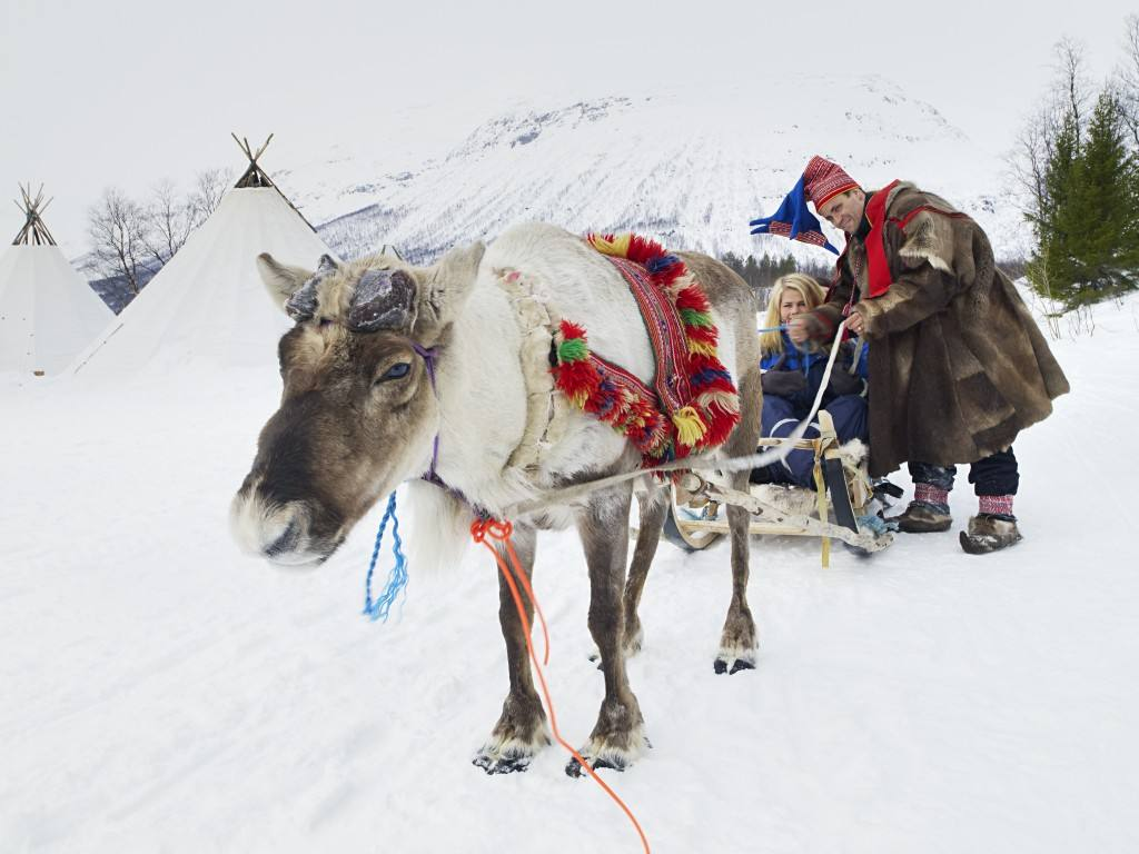 Reindeer sledge. Photo by Baard Loeken, Nordnorsk Reiseliv