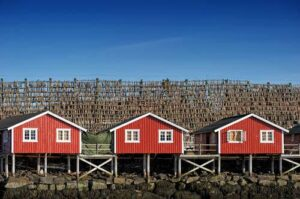 Dryfish on Lofoten Islands by Pixabay