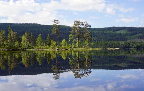 Nordmarka outside Oslo by Tord Baklund, Visit Oslo