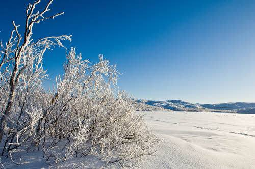 Winter in Kirkenes by Toma Babovicfoto@babovic.de, Hurtigruten