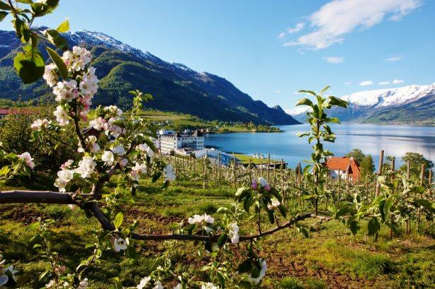Lofthus Hardangerfjord. Photo by Morten Knutsen, Ullensvang hotel