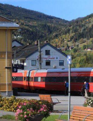The Bergen rail line at Gol station. Photo by Rita de Lange, Fjord Travel Norway
