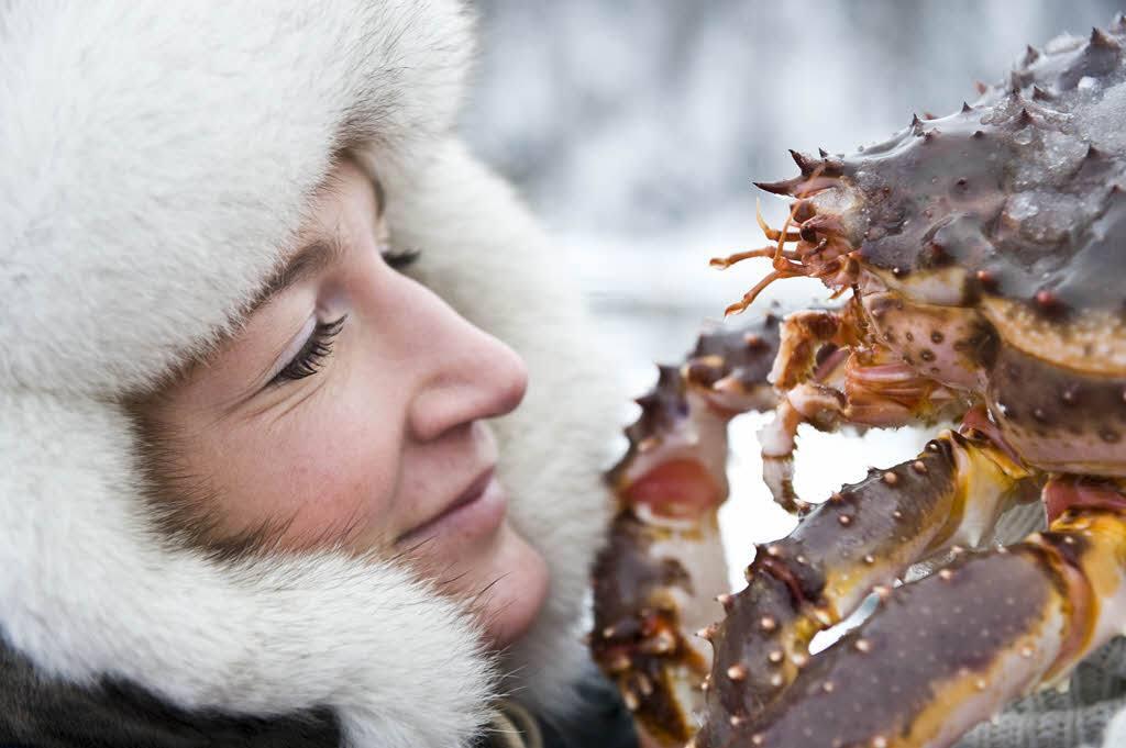 King Crab Safari Kirkenes by Terje Rakke, Nordic Life, Visit Norway