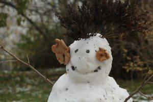 Snowman by Franziska Schwarzlmüller, Fjord Travel Norway