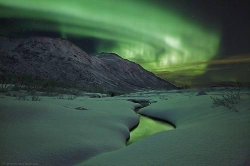 Northern Lights close to Malangen by Malangen Resort