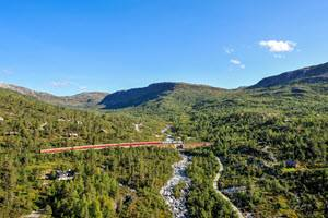 Travel on Bergen Railway by Tore Bjorback Amblie, NSB